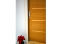 ADLO - Security door Teduo, smooth natural Veneer Oak Fig�ra Ikarus 3-00