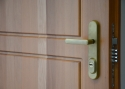 ADLO - security door TEDUO, profile F 200, door surface double-sided natural Massif